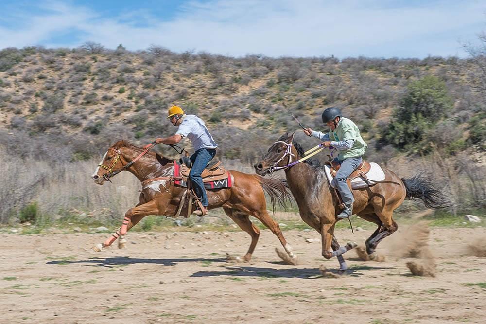 2012 desert caballeros ride
